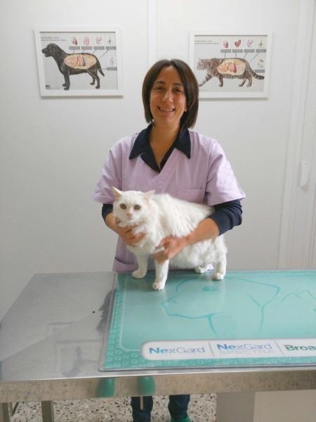 Dott.ssa Julianna Boldizzoni: Medicina Interna, Chirurgia, Medicina di Laboratorio, Alimentazione